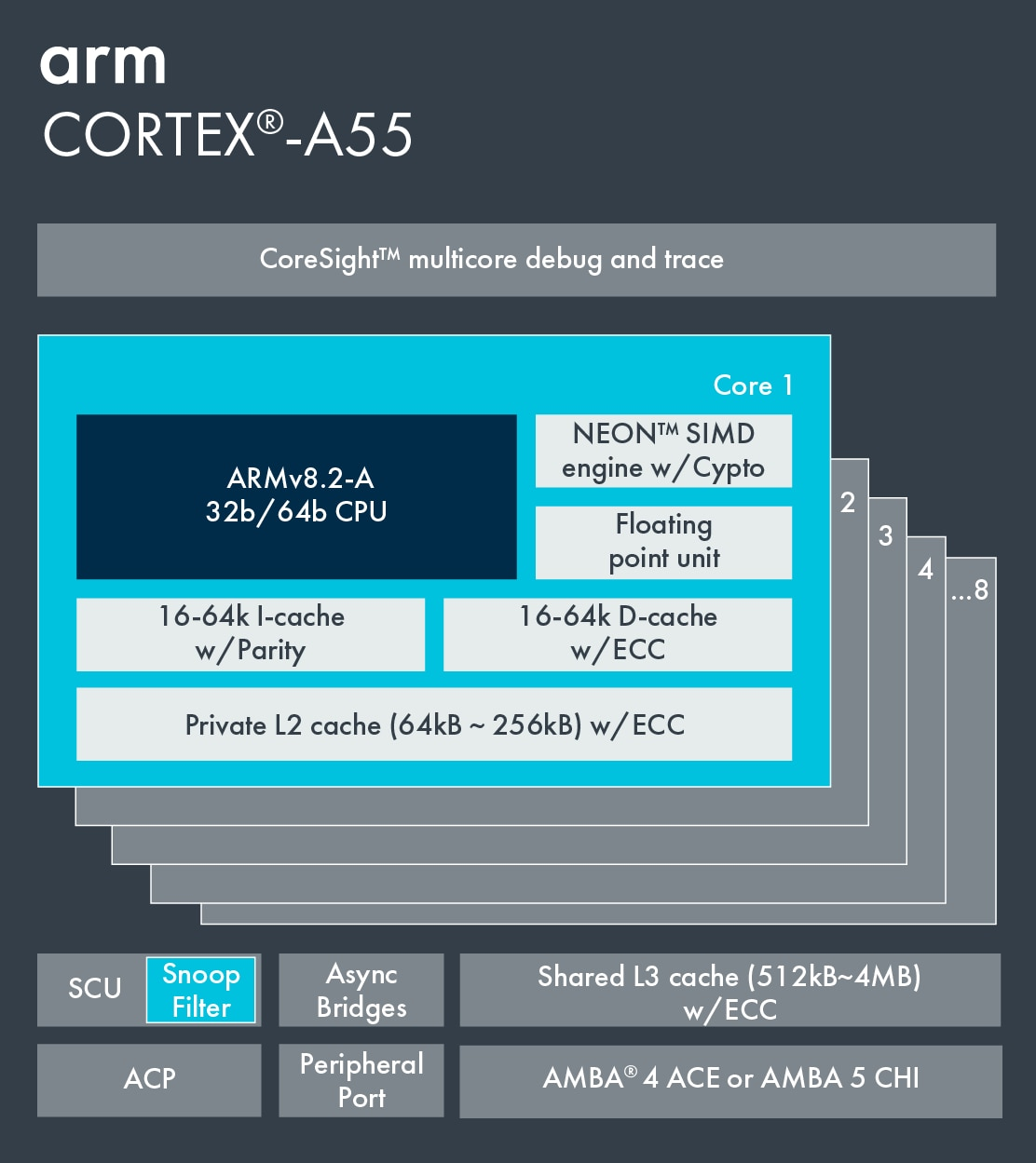 Information on Cortex-A55.