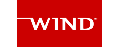 Wind partner logo