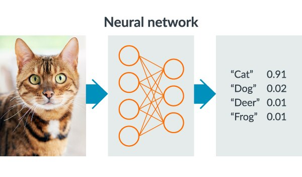 Understanding how a neural network recognizes images.